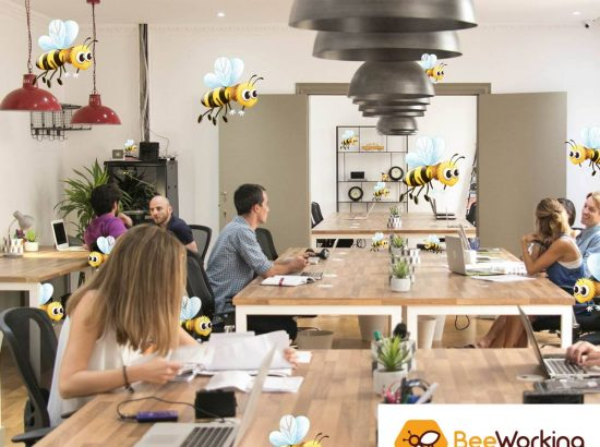 Beeworking CR