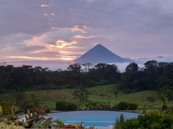 Hotel Arenal Lodge Wildlife